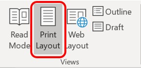 The Print Layout view button