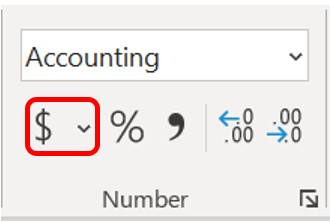 Accounting Number Format button